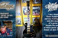 362-Vintage-Guitar